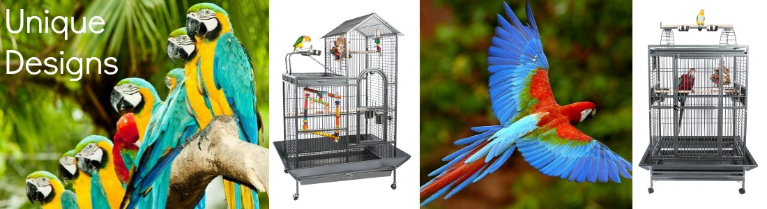 Rainforest Bird Cages Everyday Pet Parrot and small bird cages